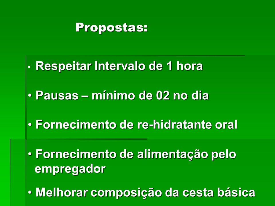 Cumprimento das Normas do DER Cumprimento da NR-31 Fiscalização periódica por parte das Usinas Exigências: