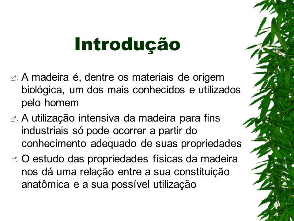 Introdução A madeira é, dentre os materiais de origem biológica, um dos mais conhecidos e utilizados pelo homem A utilização intensiva da madeira para