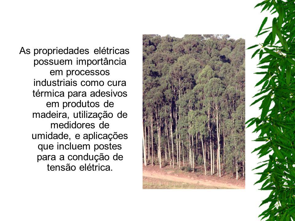 As propriedades elétricas possuem importância em processos industriais como cura térmica para adesivos em produtos de madeira, utilização de medidores