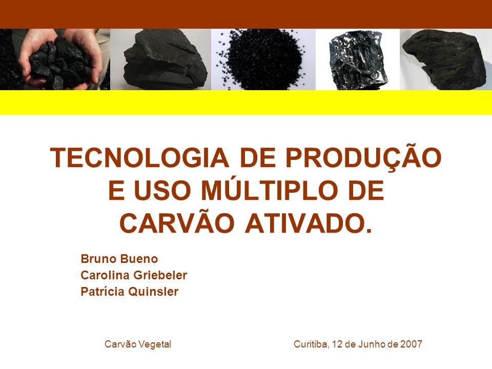 Curitiba, 12 de Junho de 2007Carvão Vegetal TECNOLOGIA DE PRODUÇÃO E USO MÚLTIPLO DE CARVÃO ATIVADO. Bruno Bueno Carolina Griebeler Patrícia Quinsler