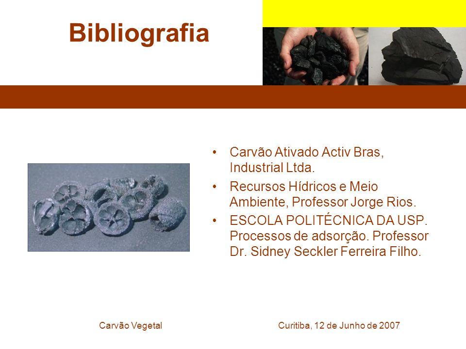 Curitiba, 12 de Junho de 2007Carvão Vegetal Bibliografia Carvão Ativado Activ Bras, Industrial Ltda. Recursos Hídricos e Meio Ambiente, Professor Jorg