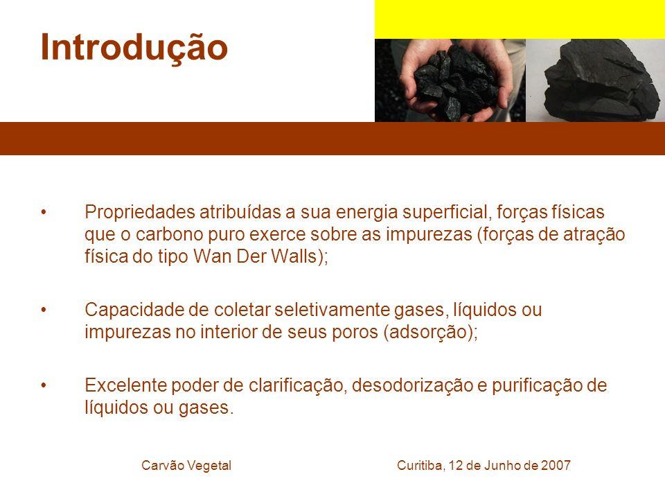 Curitiba, 12 de Junho de 2007Carvão Vegetal Introdução Propriedades atribuídas a sua energia superficial, forças físicas que o carbono puro exerce sob