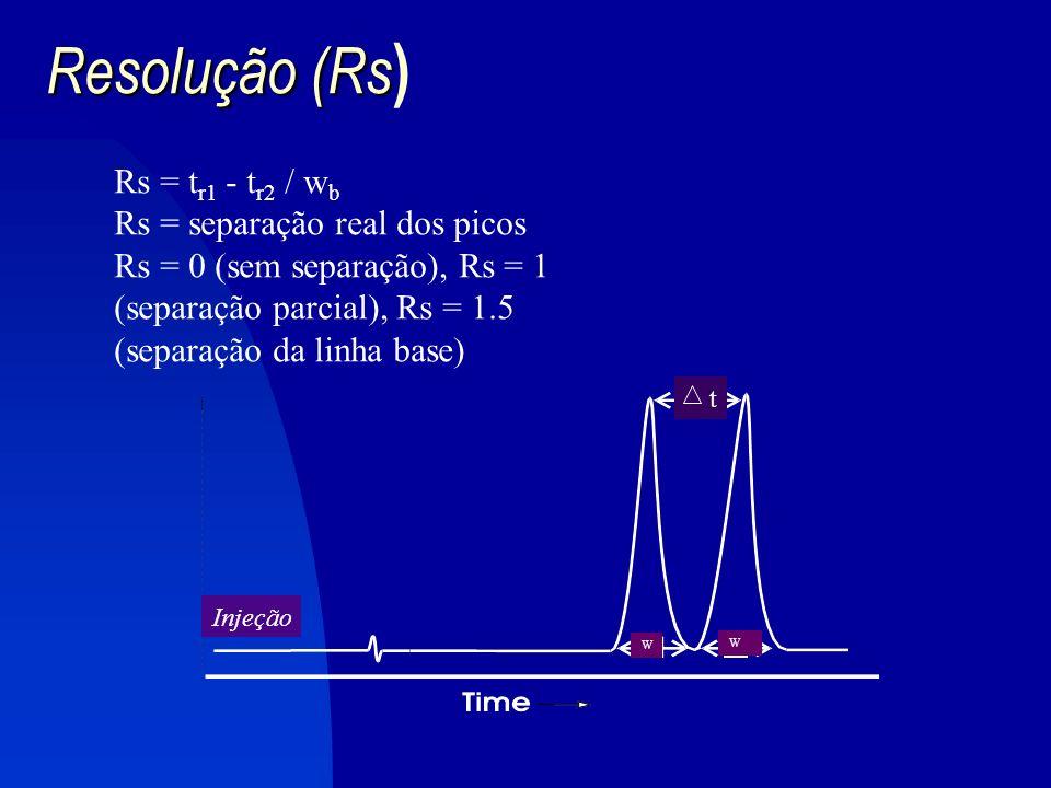 Cromatografia por exclusão de tamanho FLUXO Poro Gel