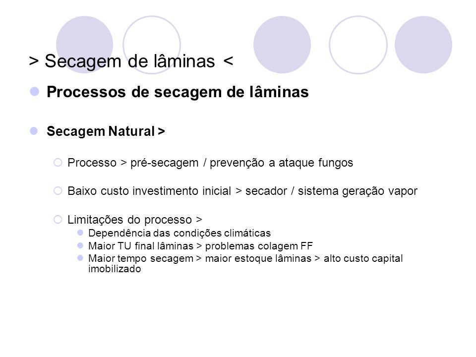 > Secagem de lâminas < Processos de secagem de lâminas Secagem Natural > Processo > pré-secagem / prevenção a ataque fungos Baixo custo investimento i