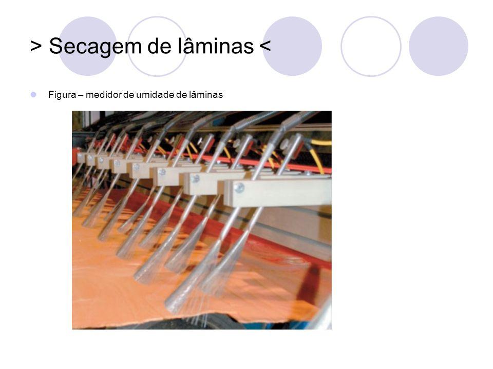 > Secagem de lâminas < Figura – medidor de umidade de lâminas