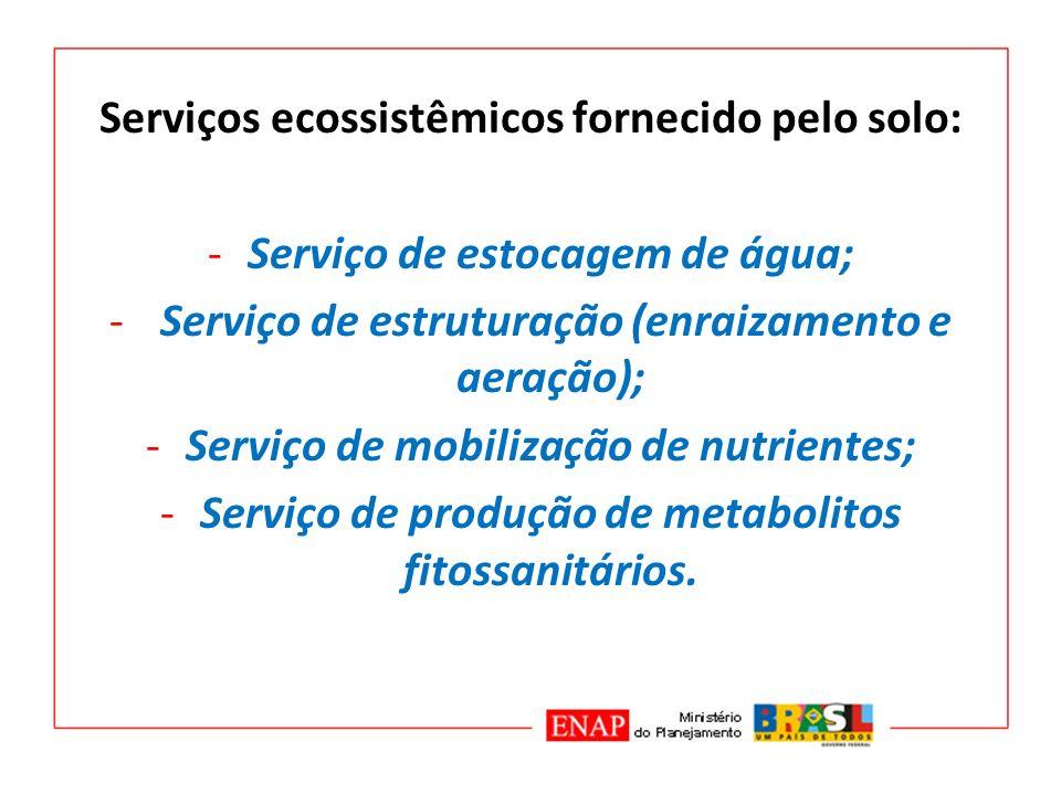 Serviços ecossistêmicos fornecido pelo solo: -Serviço de estocagem de água; - Serviço de estruturação (enraizamento e aeração); -Serviço de mobilizaçã