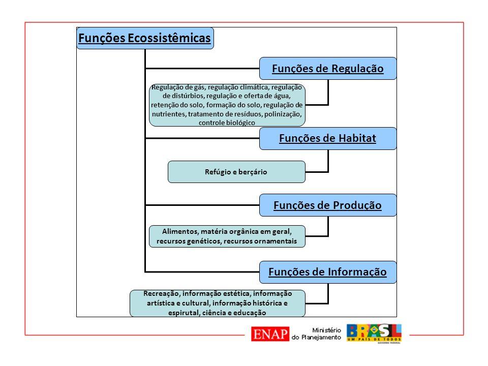 Funções Ecossistêmicas Funções de Regulação Funções de Habitat Funções de Produção Funções de Informação Regulação de gás, regulação climática, regula