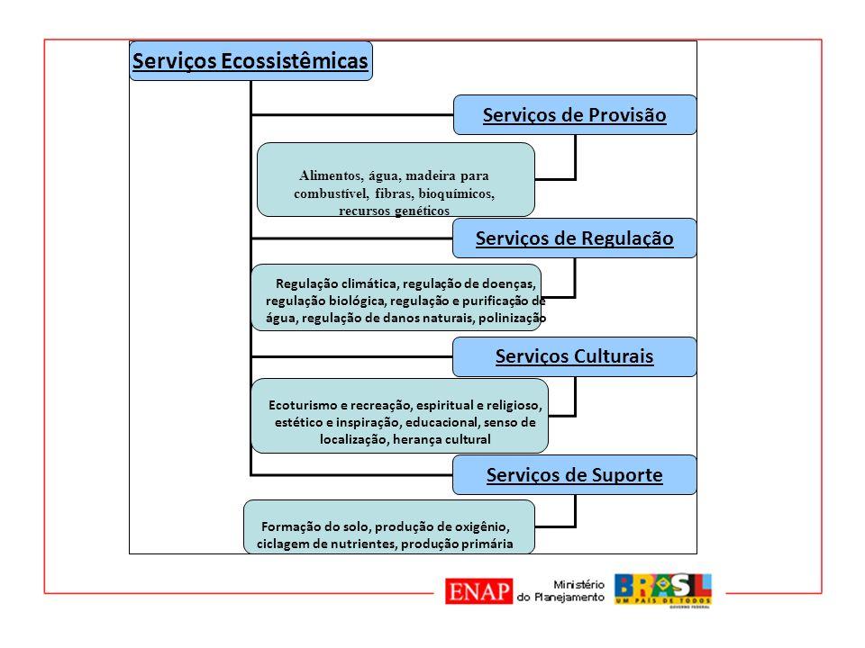 Serviços Ecossistêmicas Serviços de Provisão Serviços de Regulação Serviços Culturais Serviços de Suporte Alimentos, água, madeira para combustível, f