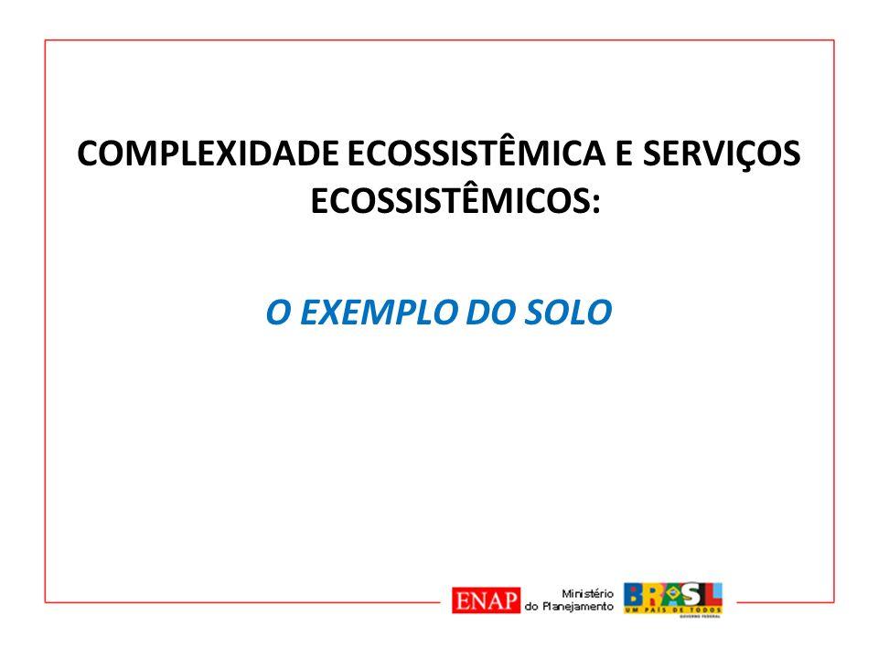 COMPLEXIDADE ECOSSISTÊMICA E SERVIÇOS ECOSSISTÊMICOS: O EXEMPLO DO SOLO