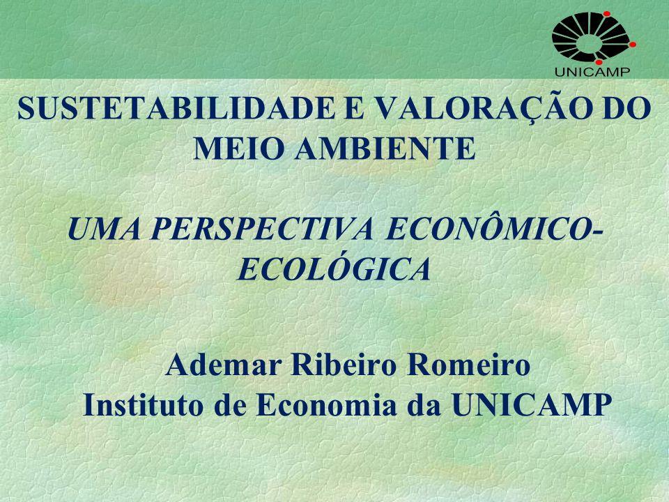 SUSTETABILIDADE E VALORAÇÃO DO MEIO AMBIENTE UMA PERSPECTIVA ECONÔMICO- ECOLÓGICA Ademar Ribeiro Romeiro Instituto de Economia da UNICAMP