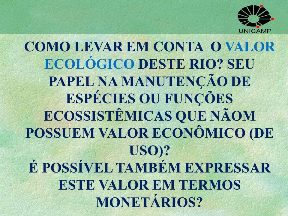 COMO LEVAR EM CONTA O VALOR ECOLÓGICO DESTE RIO? SEU PAPEL NA MANUTENÇÃO DE ESPÉCIES OU FUNÇÕES ECOSSISTÊMICAS QUE NÃOM POSSUEM VALOR ECONÔMICO (DE US