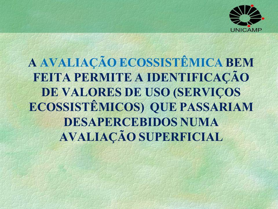 A AVALIAÇÃO ECOSSISTÊMICA BEM FEITA PERMITE A IDENTIFICAÇÃO DE VALORES DE USO (SERVIÇOS ECOSSISTÊMICOS) QUE PASSARIAM DESAPERCEBIDOS NUMA AVALIAÇÃO SU