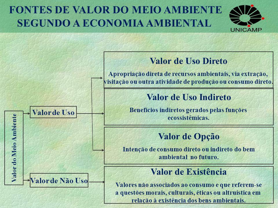 Valor de Uso Direto Apropriação direta de recursos ambientais, via extração, visitação ou outra atividade de produção ou consumo direto. Valor de Uso