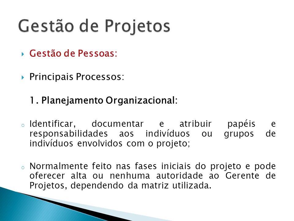 Gestão de Pessoas: Principais Processos: 1. Planejamento Organizacional: o Identificar, documentar e atribuir papéis e responsabilidades aos indivíduo