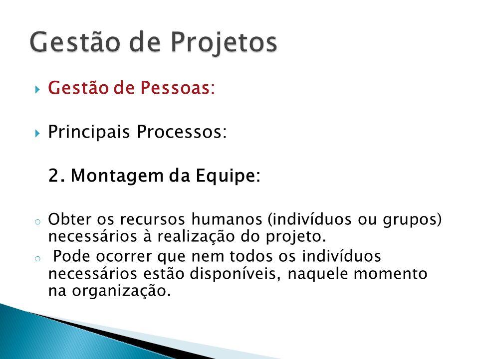 Gestão de Pessoas: Principais Processos: 2. Montagem da Equipe: o Obter os recursos humanos (indivíduos ou grupos) necessários à realização do projeto