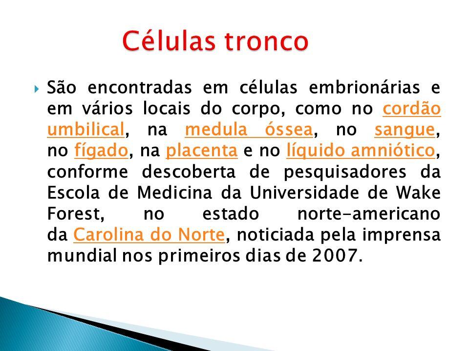 São encontradas em células embrionárias e em vários locais do corpo, como no cordão umbilical, na medula óssea, no sangue, no fígado, na placenta e no