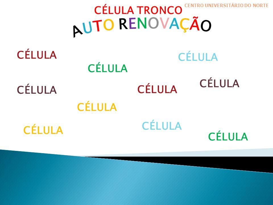 CÉLULA TRONCO CÉLULA CENTRO UNIVERSITÁRIO DO NORTE