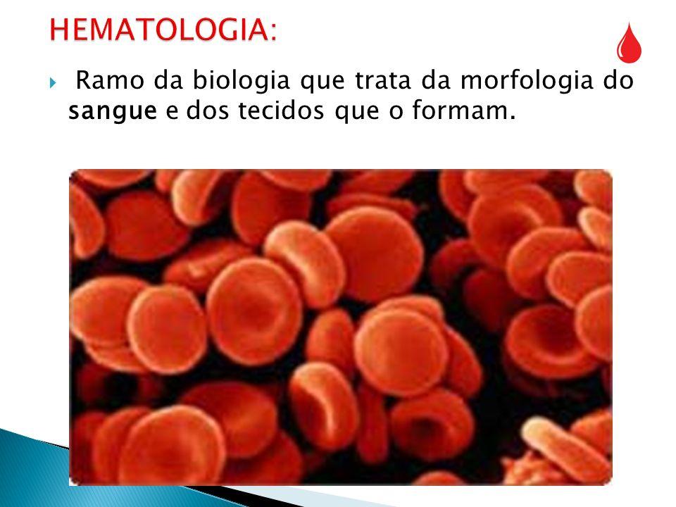 Ramo da biologia que trata da morfologia do sangue e dos tecidos que o formam.