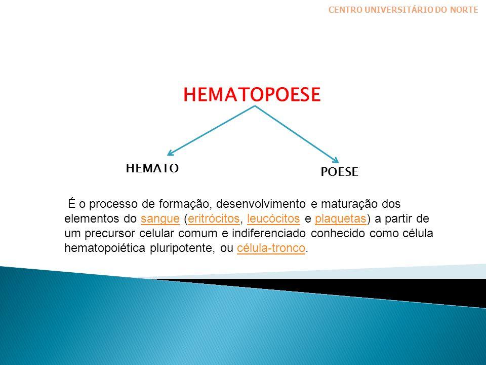 HEMATOPOESE HEMATO POESE CENTRO UNIVERSITÁRIO DO NORTE É o processo de formação, desenvolvimento e maturação dos elementos do sangue (eritrócitos, leucócitos e plaquetas) a partir de um precursor celular comum e indiferenciado conhecido como célula hematopoiética pluripotente, ou célula-tronco.sangueeritrócitosleucócitosplaquetascélula-tronco