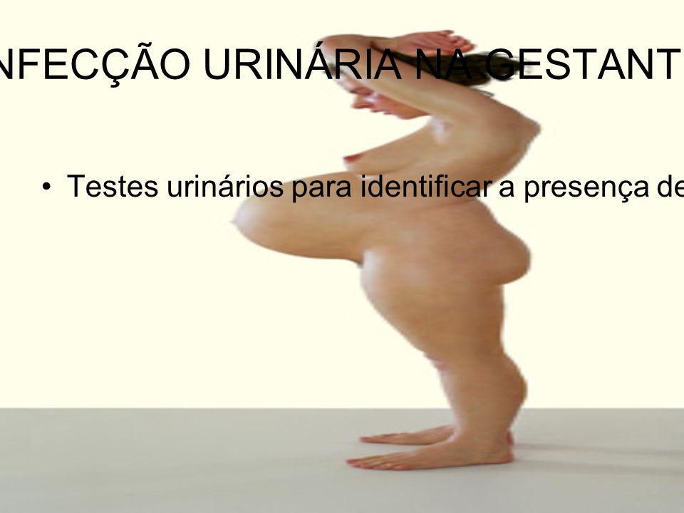 INFECÇÃO URINÁRIA NA GESTANTE Testes urinários para identificar a presença de infecção bem como o estudo do sedimento urinário (leucocitúria)