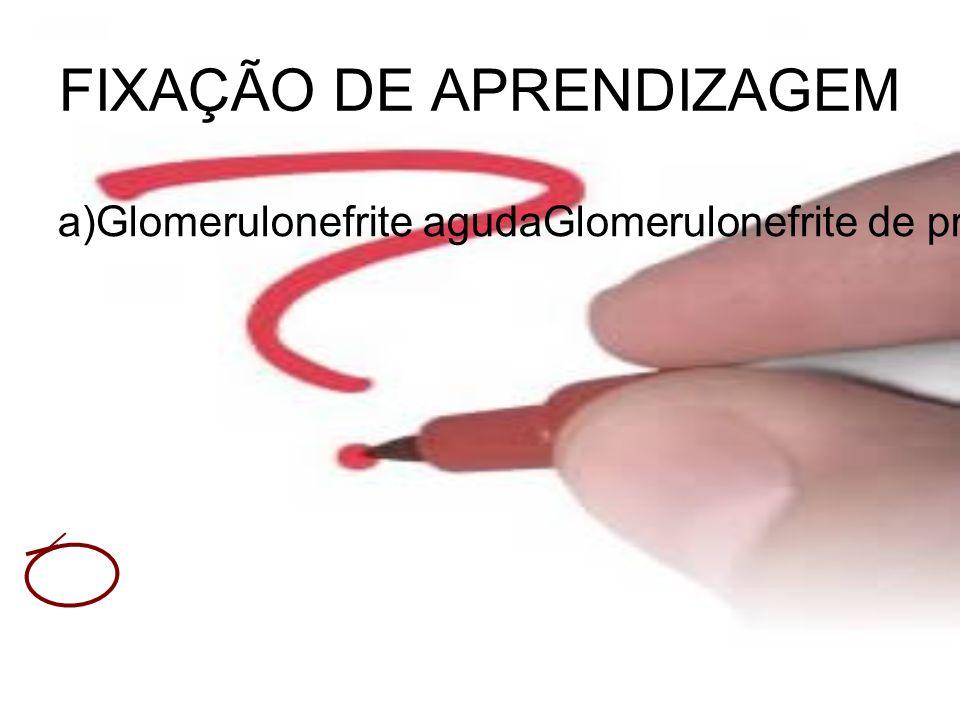 FIXAÇÃO DE APRENDIZAGEM a)Glomerulonefrite agudaGlomerulonefrite de progressão rápidaNefrite intersticial agudaSíndrome nefrótica