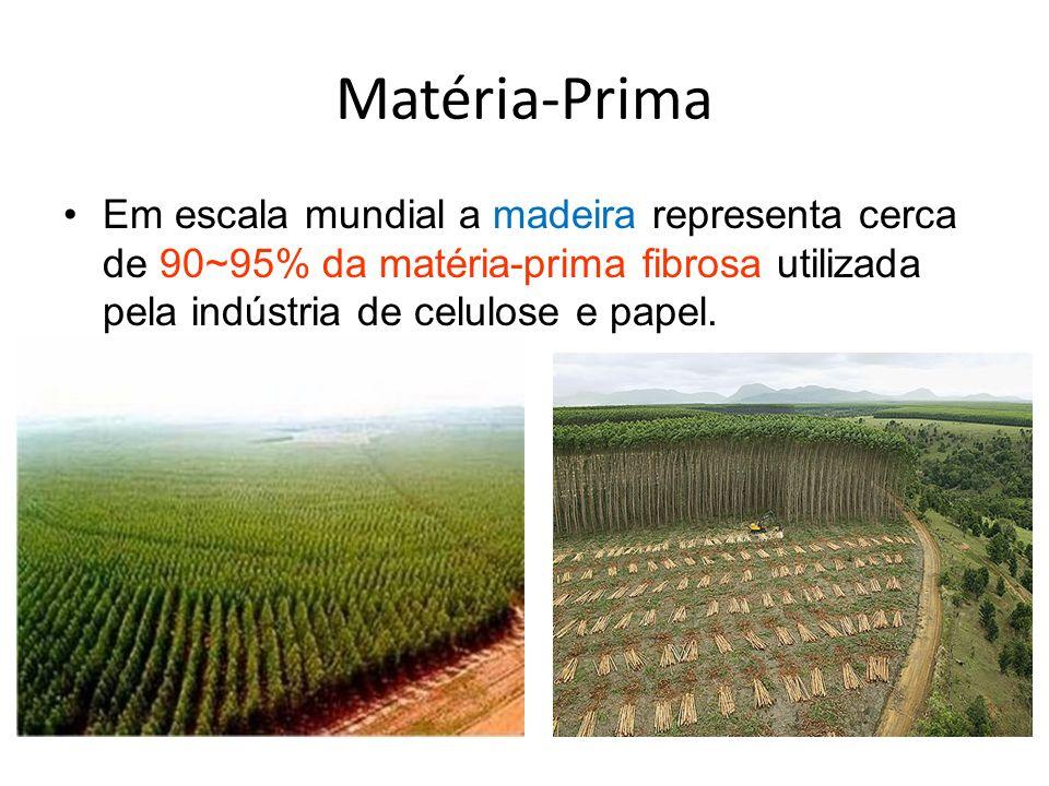 Matéria-Prima Em escala mundial a madeira representa cerca de 90~95% da matéria-prima fibrosa utilizada pela indústria de celulose e papel.
