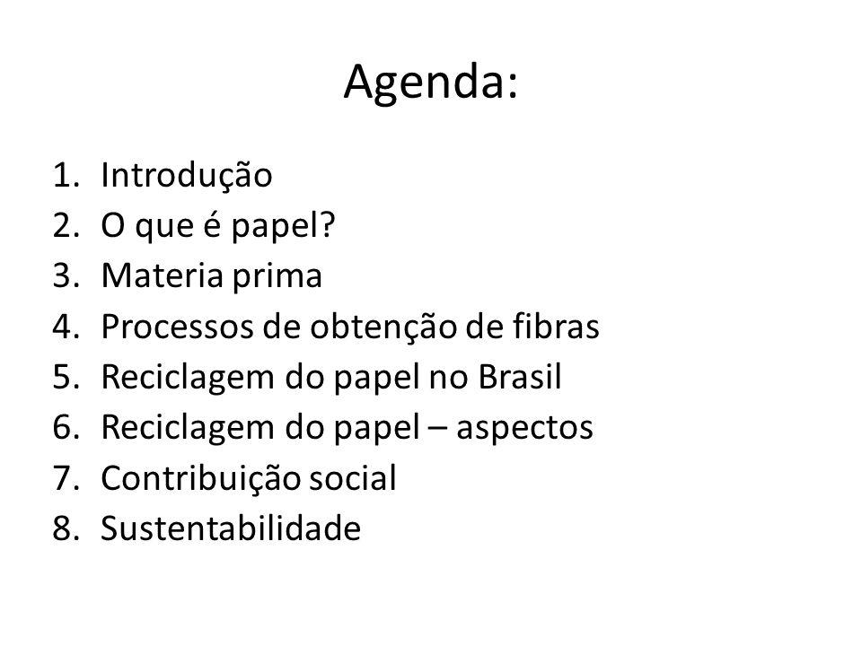 Agenda: 1.Introdução 2.O que é papel? 3.Materia prima 4.Processos de obtenção de fibras 5.Reciclagem do papel no Brasil 6.Reciclagem do papel – aspect