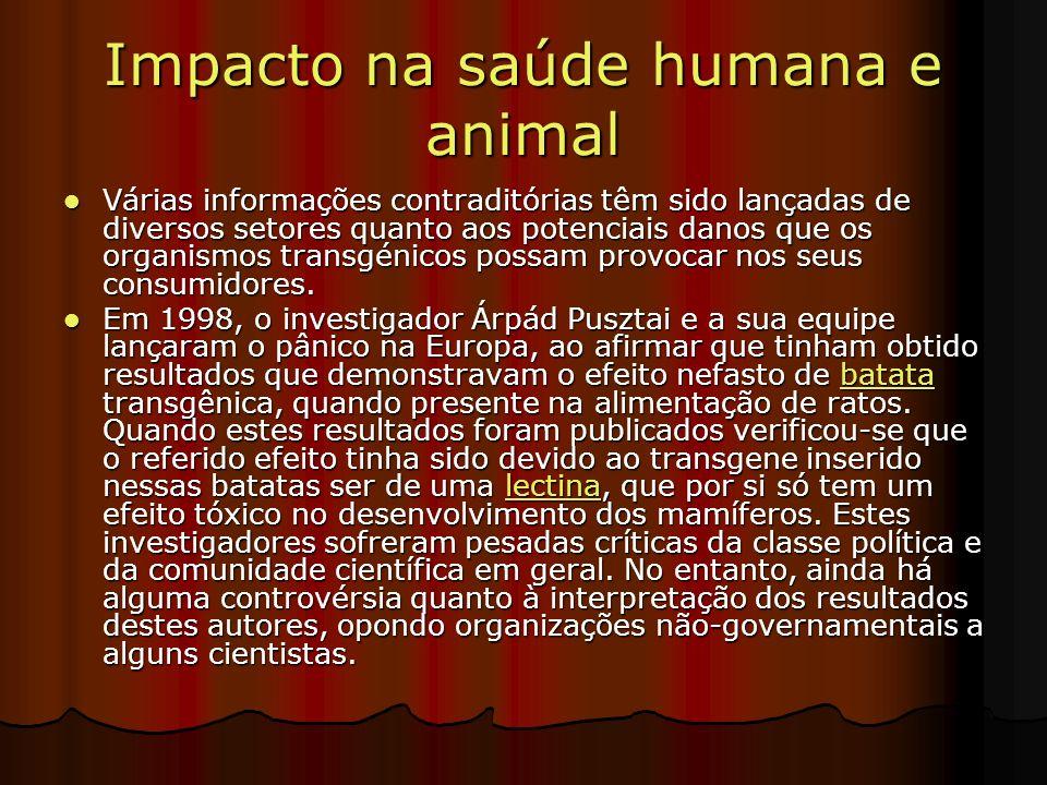 Impacto na saúde humana e animal Várias informações contraditórias têm sido lançadas de diversos setores quanto aos potenciais danos que os organismos transgénicos possam provocar nos seus consumidores.
