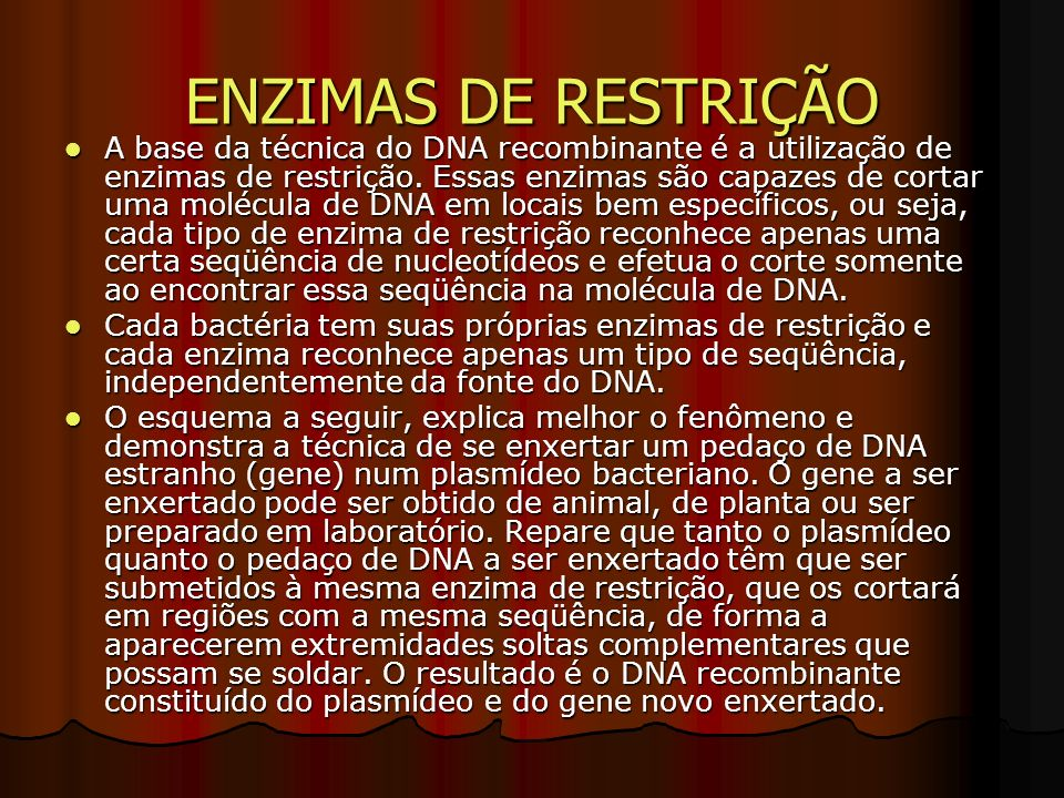 TÉCNICA DO DNA RECOMBINANTE