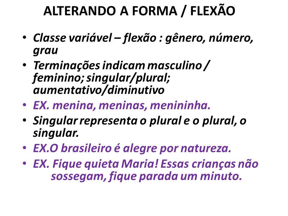ALTERANDO A FORMA / FLEXÃO Classe variável – flexão : gênero, número, grau Terminações indicam masculino / feminino; singular/plural; aumentativo/diminutivo EX.