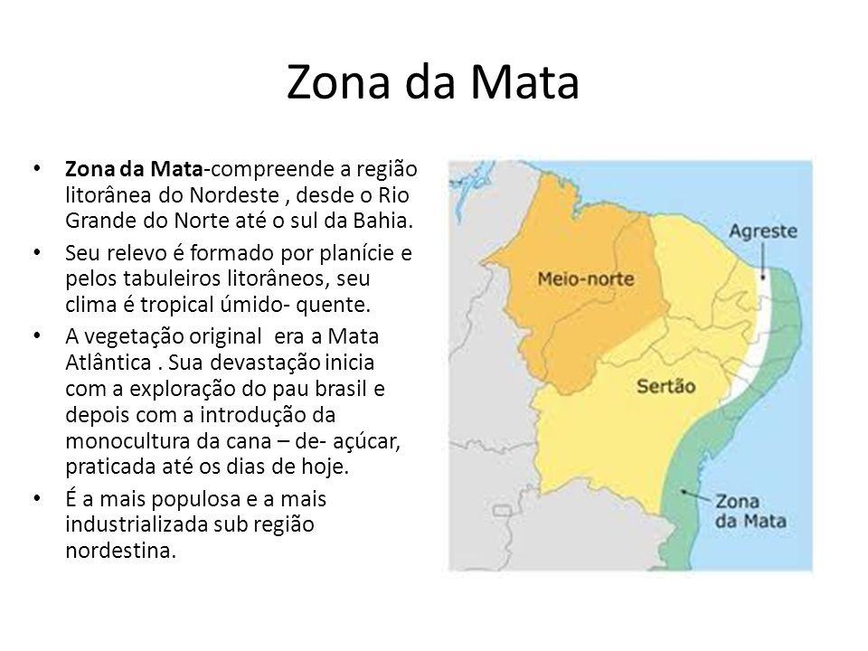 Zona da Mata Zona da Mata-compreende a região litorânea do Nordeste, desde o Rio Grande do Norte até o sul da Bahia. Seu relevo é formado por planície