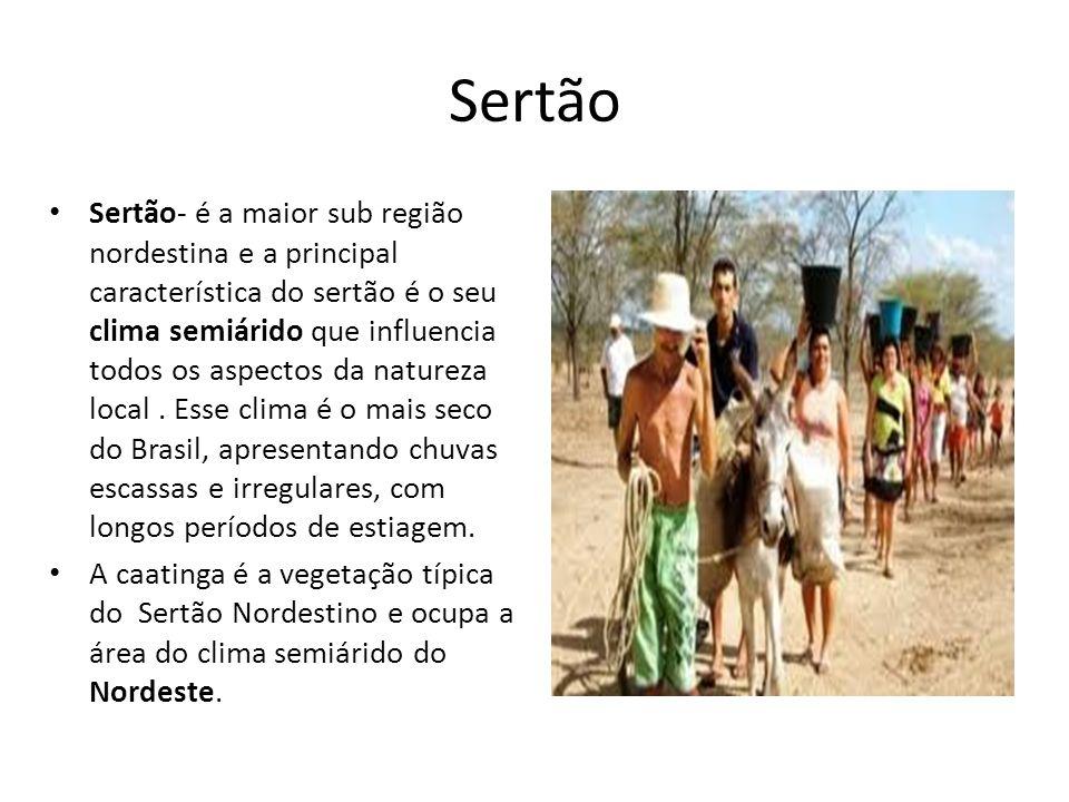 Sertão Sertão- é a maior sub região nordestina e a principal característica do sertão é o seu clima semiárido que influencia todos os aspectos da natu