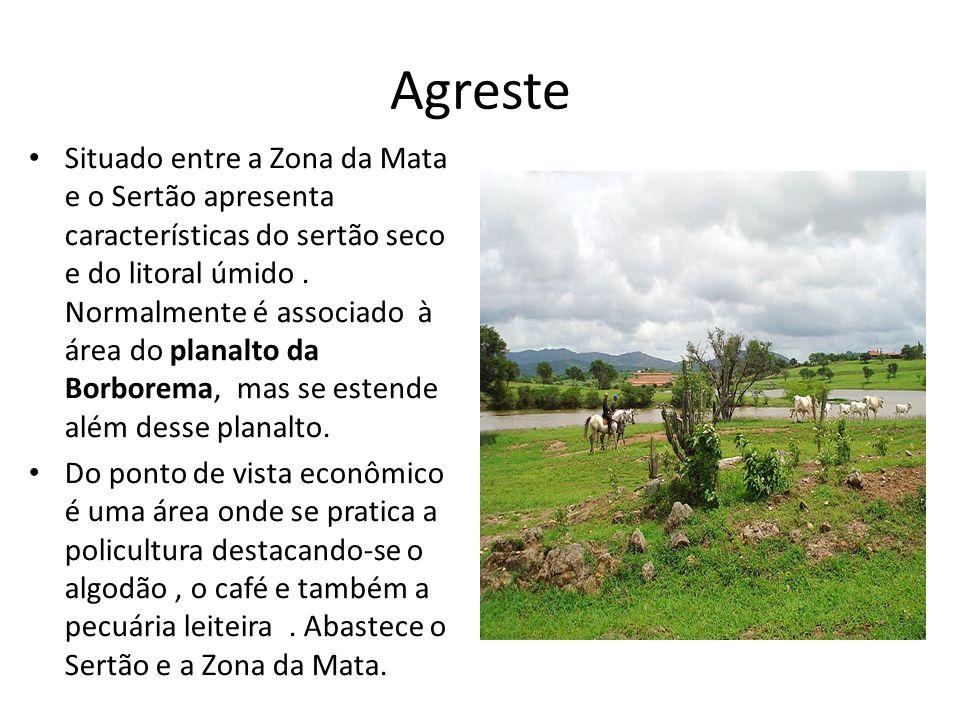 Agreste Situado entre a Zona da Mata e o Sertão apresenta características do sertão seco e do litoral úmido. Normalmente é associado à área do planalt