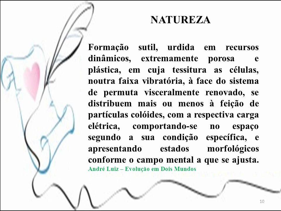Formação sutil, urdida em recursos dinâmicos, extremamente porosa e plástica, em cuja tessitura as células, noutra faixa vibratória, à face do sistema