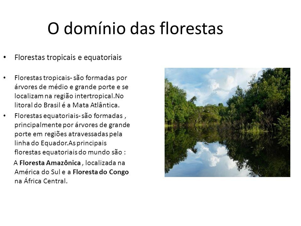 O domínio das florestas Florestas tropicais- são formadas por árvores de médio e grande porte e se localizam na região intertropical.No litoral do Bra