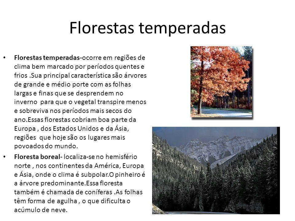 Florestas temperadas Florestas temperadas-ocorre em regiões de clima bem marcado por períodos quentes e frios.Sua principal característica são árvores