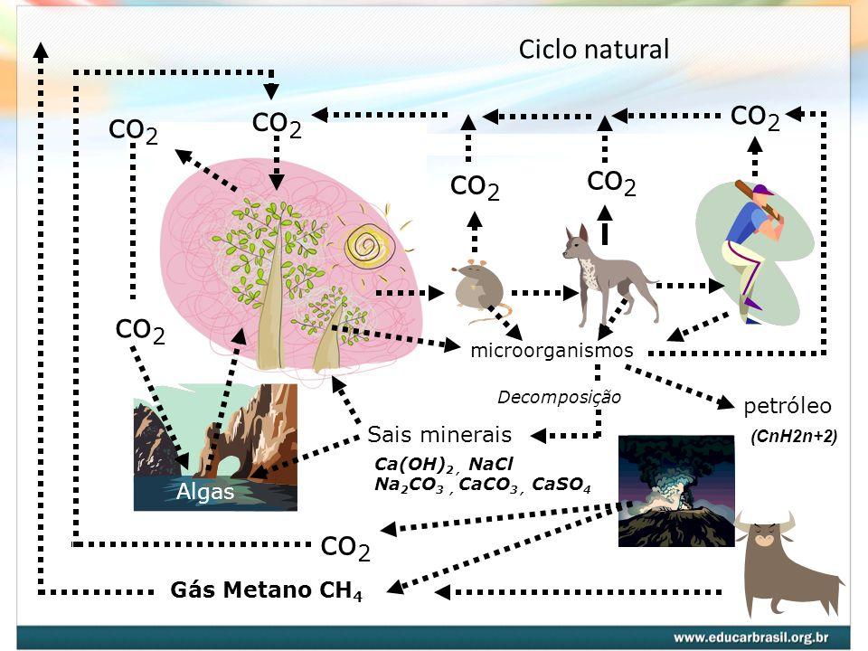 Ciclo natural co 2 Algas co 2 microorganismos Decomposição Sais minerais Ca(OH) 2, NaCl Na 2 CO 3, CaCO 3, CaSO 4 petróleo co 2 Gás Metano CH 4 (CnH2n+2)