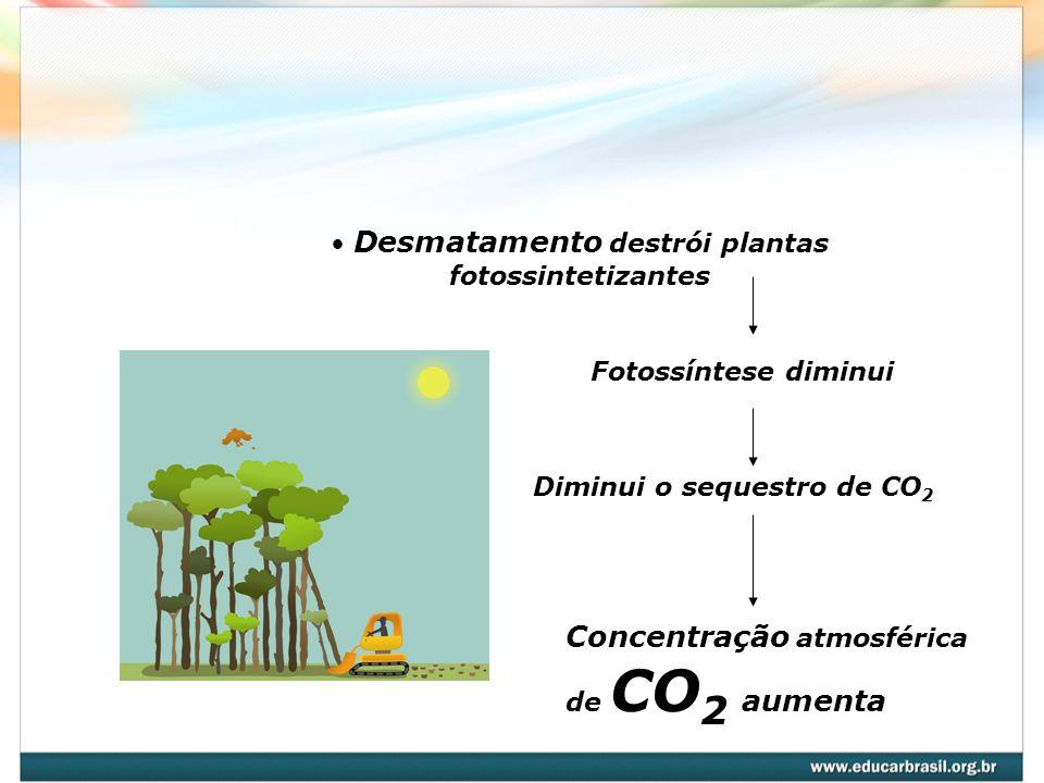 Queima de combustíveis fósseis Retirada do petróleo que constitui reserva de carbono relativamente imobilizada pela natureza por períodos de milhões de anos, transformando – a em gás carbônico Concentração atmosférica de CO 2 aumenta