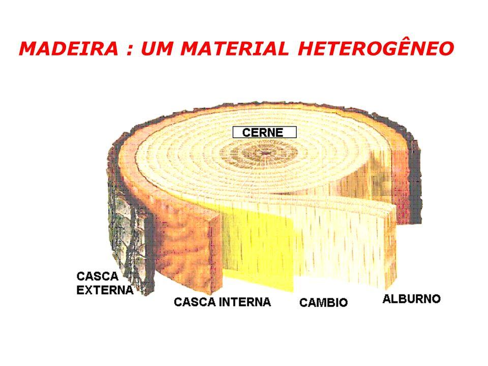 MADEIRA : UM MATERIAL HETEROGÊNEO