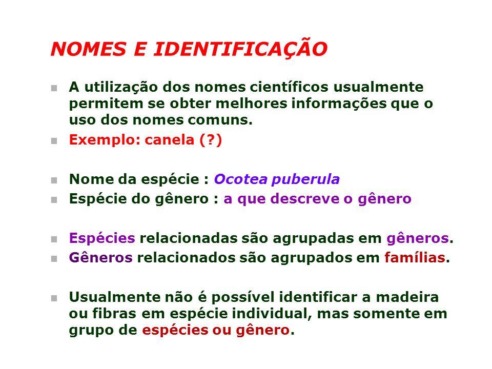 NOMES E IDENTIFICAÇÃO n A utilização dos nomes científicos usualmente permitem se obter melhores informações que o uso dos nomes comuns. n Exemplo: ca