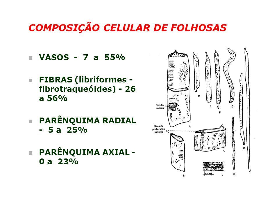 COMPOSIÇÃO CELULAR DE FOLHOSAS n VASOS - 7 a 55% n FIBRAS (libriformes - fibrotraqueóides) - 26 a 56% n PARÊNQUIMA RADIAL - 5 a 25% n PARÊNQUIMA AXIAL