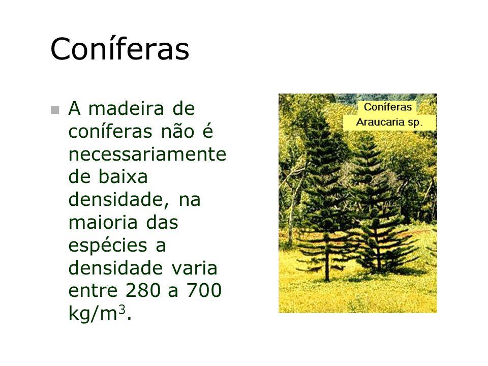 Coníferas n A madeira de coníferas não é necessariamente de baixa densidade, na maioria das espécies a densidade varia entre 280 a 700 kg/m 3.