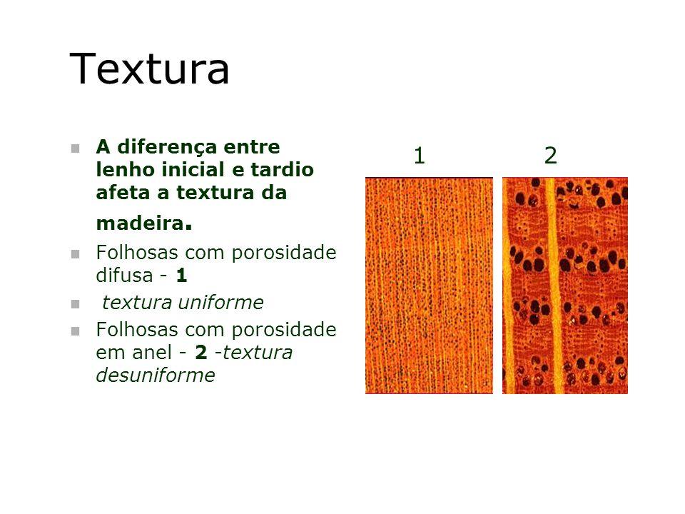 Textura n A diferença entre lenho inicial e tardio afeta a textura da madeira. n Folhosas com porosidade difusa - 1 n textura uniforme n Folhosas com