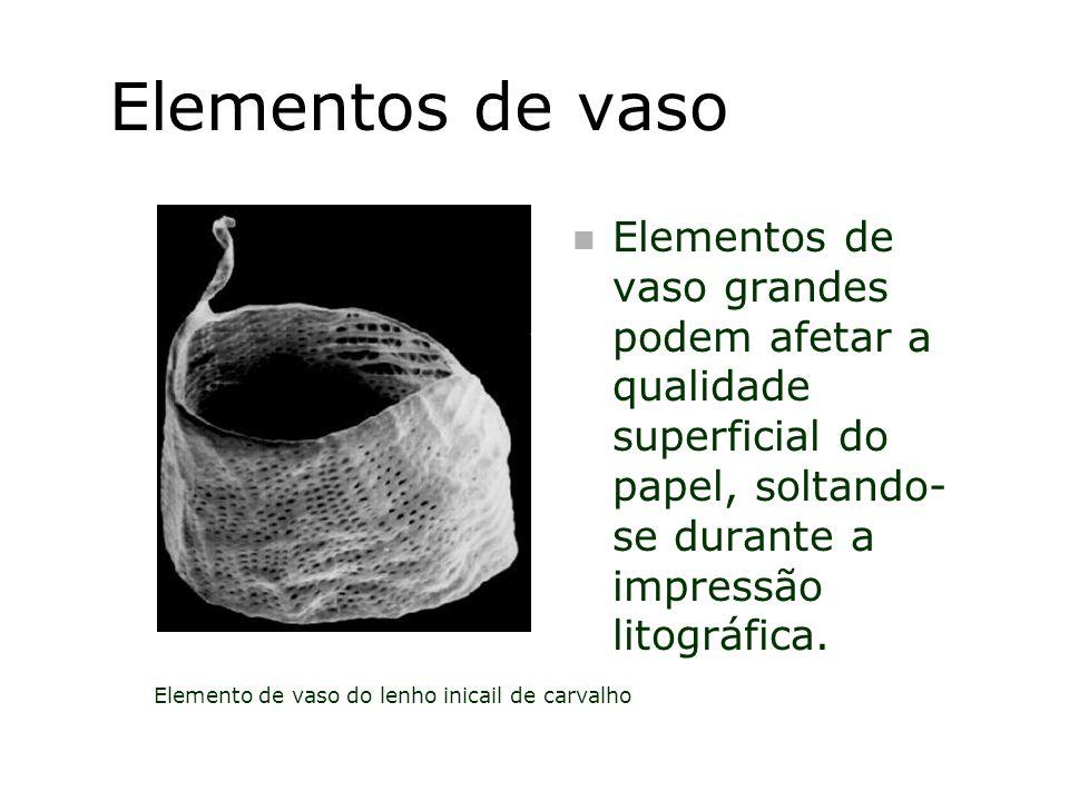 Elementos de vaso n Elementos de vaso grandes podem afetar a qualidade superficial do papel, soltando- se durante a impressão litográfica. Elemento de