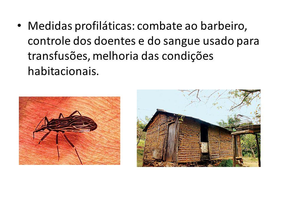 Malária (maleita, febre terça) Plasmodium vivax: febre do tipo terça (1º e 3º dias) benigna; Plasmodium falciparum: febre terça maligna, produz aglutinação das hemácias ocasionando entupimento vascular, complicações freqüentemente fatais; Plasmodium malarie: febre do tipo quartã (1º e 4ºdias).