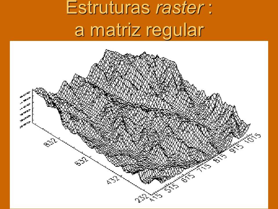 Estruturas raster : a matriz regular