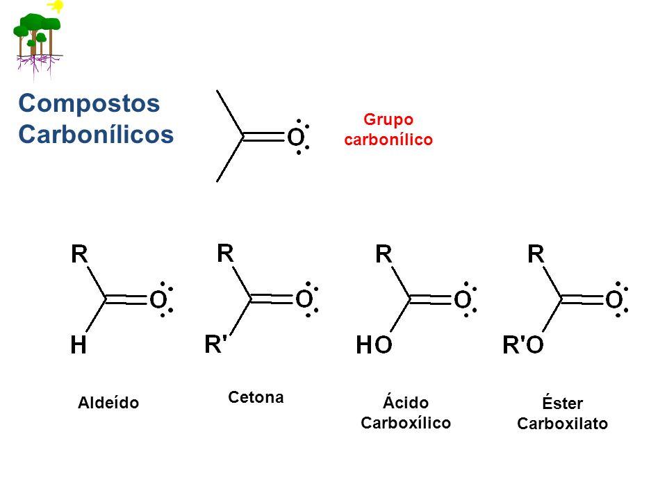 Grupo carbonílico Aldeído Cetona Ácido Carboxílico Éster Carboxilato