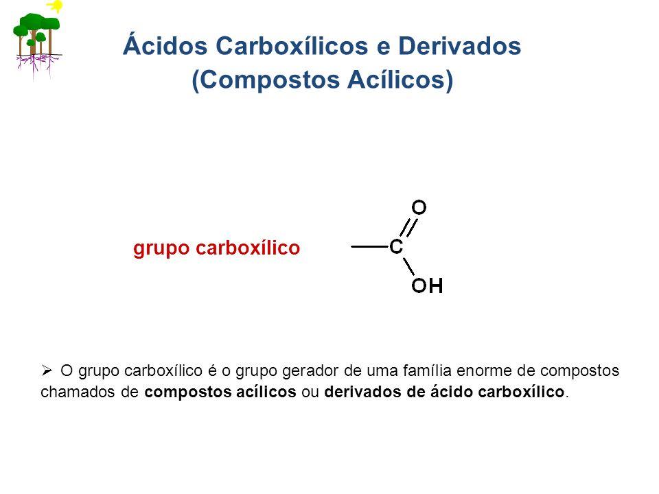 Ácidos Carboxílicos e Derivados (Compostos Acílicos) grupo carboxílico O grupo carboxílico é o grupo gerador de uma família enorme de compostos chamad