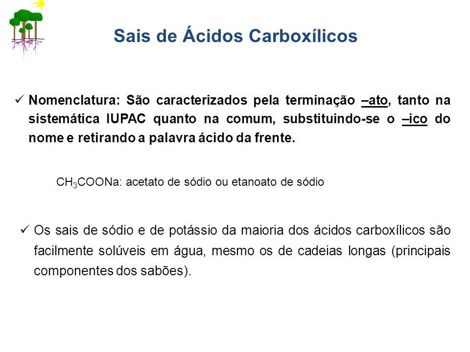 Sais de Ácidos Carboxílicos Nomenclatura: São caracterizados pela terminação –ato, tanto na sistemática IUPAC quanto na comum, substituindo-se o –ico