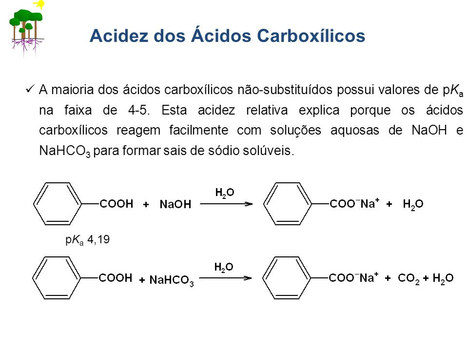 Acidez dos Ácidos Carboxílicos A maioria dos ácidos carboxílicos não-substituídos possui valores de pK a na faixa de 4-5. Esta acidez relativa explica